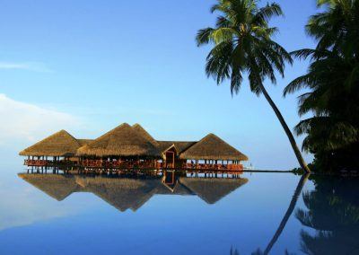 Medhufushi-Island-Resort-maldives-pool-palm